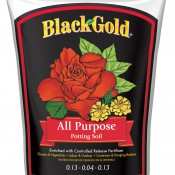 Black Gold All Purpose