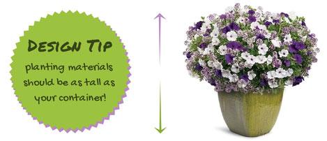 Design Tip for Beginner Container Gardening