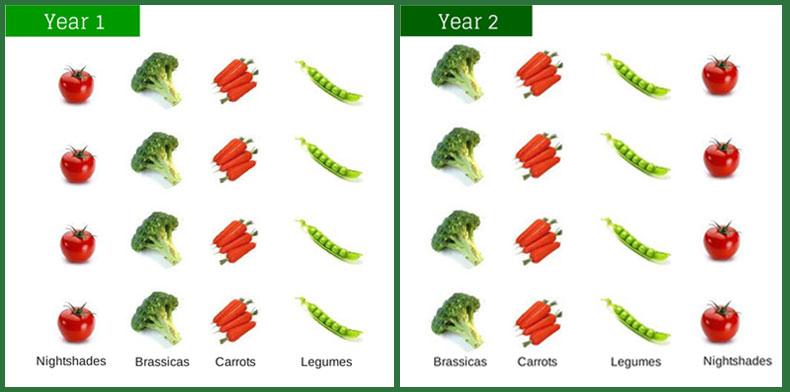 crop-roation