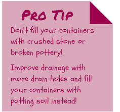 Container Garden Potting Soil & Drainage Tip