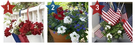 patriotic container gardens as July 4th Decorations