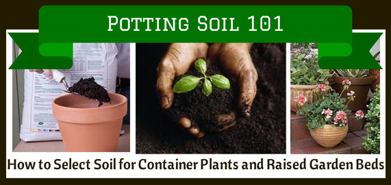potting-soil-101