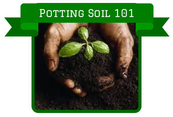 Potting Soil 101 How To Select Soil For Container Plants And Raised Gardens Beds