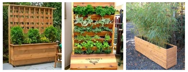 Think outside the box 20 creative container garden ideas for Garden screening ideas