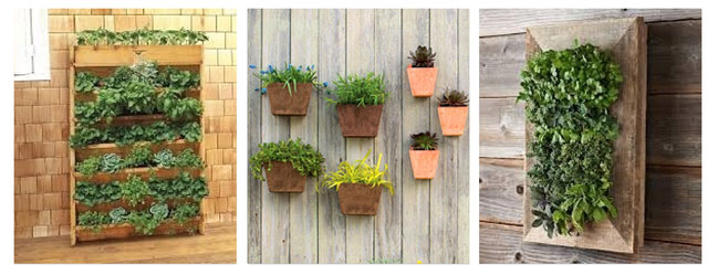 Think Outside The Box 20 Creative Container Garden Ideas