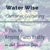 Water Wise Container Gardening