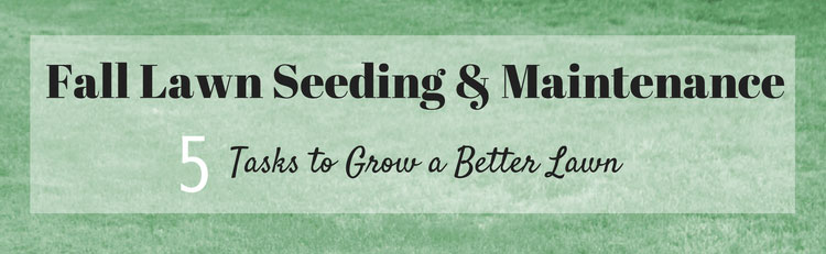 Fall lawn seeding maintenance 5 tasks to grow a better lawn great garden supply - Autumn lawn care advice ...